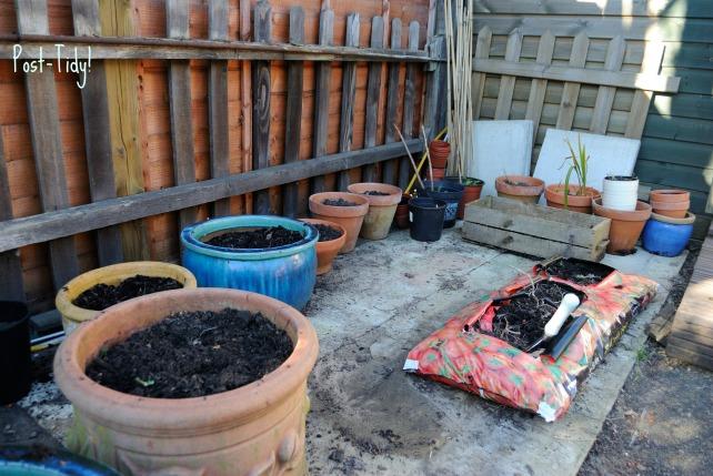 Garden Mar 12