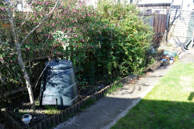 Garden Mar 7
