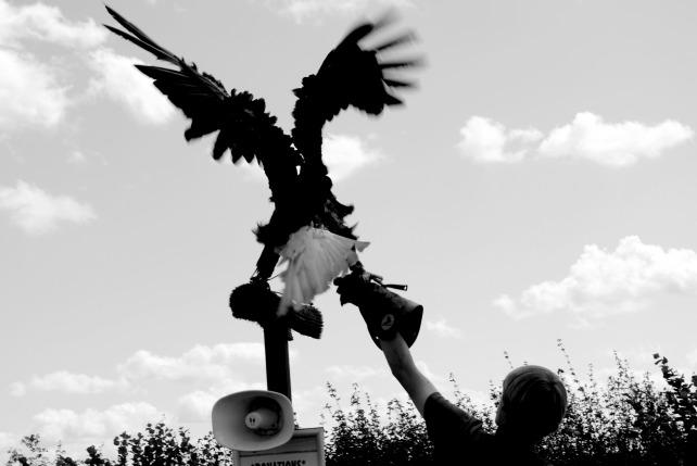 Eagle Heights 14